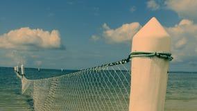 Haai netto in oceaan stock afbeeldingen