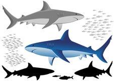 Haaien en vissen stock illustratie