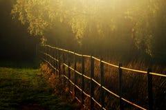 Haampstead Londres de Autumn Light In fotografia de stock royalty free