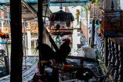 Haan op de markt van oude stad in Koh Panyee Thailand royalty-vrije stock afbeelding