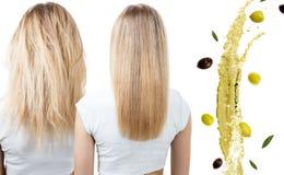 Haar before and after behandeling door olietherapie royalty-vrije stock afbeeldingen
