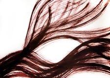 Haar die zich in de wind ontwikkelen Overzichten van flexibele lijnen getrokken oogcontour stock afbeeldingen