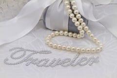 Haar Gift van Reis Royalty-vrije Stock Foto's