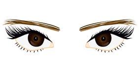 Haar ogen royalty-vrije illustratie