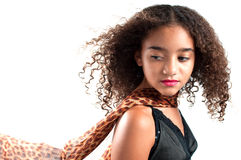 Haar- und Schalschlag Stockbild