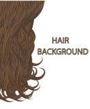 Haar-Vektorillustration der Locken braune Lizenzfreie Stockfotografie