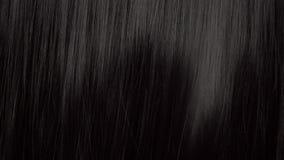 Haarbeschaffenheitshintergrund, keine Person stock video footage