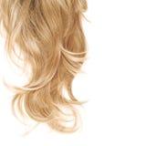 Haarfragment über dem Weiß Lizenzfreie Stockbilder