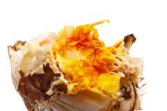 Haarige Krabbenfleisch- und Krabbeneier lokalisiert auf Weiß Stockfotos