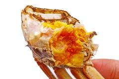 Haarige Krabbenfleisch- und Krabbeneier lokalisiert auf Weiß Stockfoto