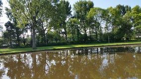 Haarlem naturschoterbos Royaltyfria Foton
