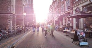 Sunlight flare over St. Bavo Church in Haarlem stock footage