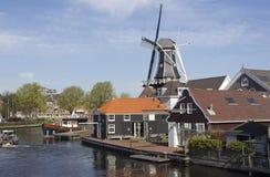 haarlem windmill Arkivfoton