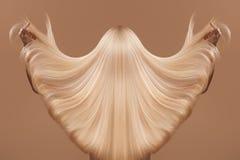 Haarpflegekonzept stockbilder