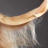 Haarpflegekonzept Gerades blondes Haar mit Kamm Stockfotografie