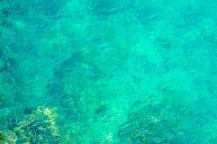 Haarscharfes blaues grünes Meer oder Ozean Stockfotos