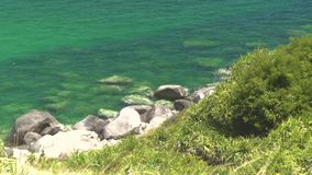 Haarscharfes Wasser und felsiges Ufer auf grüner Insel im Meer Transparentes Meer und Felsen auf Küste von grüner Insel stock video footage