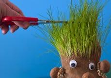 Haarschneider Lizenzfreies Stockfoto