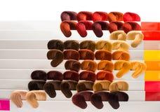 Haarsteekproeven van verschillende kleuren Royalty-vrije Stock Afbeelding