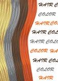 Haarsträhnen, die mit Gesundheits- und Schönheitsvier Strängen der roten und grauhaarigen Brunetteblondine glänzen Stockfoto