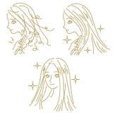 HAARVERZORGING, beschadigd haar en mooi haar, vrouw vector illustratie