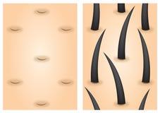 Haarwachstumsreizmittel vorher nachher Lizenzfreie Stockbilder