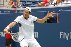 Haas Tommy at Rogers Cup 2008 14 Royalty Free Stock Photo