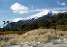 Haast beach Stock Images