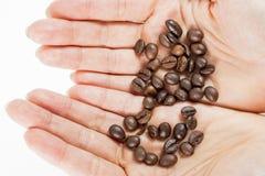 Haba de Cofee dentro de thehands Foto de archivo