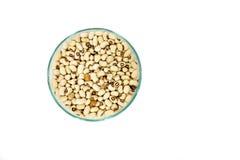 Haba de la soja en la taza de cristal Foto de archivo libre de regalías