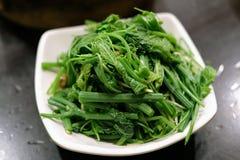 Haba de soja salada deseo sofrita de Sayate foto de archivo libre de regalías