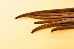 Haba de vainilla en el top del tablero de madera Imagen de archivo libre de regalías