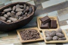 Haba del cacao Imagen de archivo libre de regalías