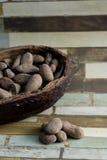 Haba del cacao Fotografía de archivo