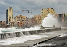 Habana. Royalty-vrije Stock Foto's