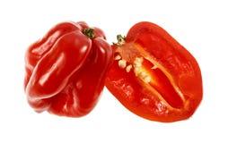Habanero красного цвета перца Chili Стоковые Изображения