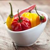 Habanero and chili Royalty Free Stock Image