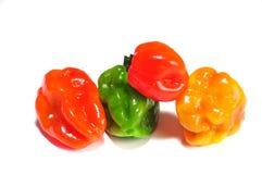 Habanero dei peperoncini rossi su una priorità bassa bianca Immagini Stock Libere da Diritti
