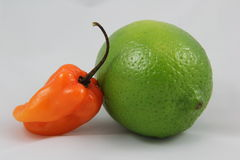Habanero Lime Stock Image