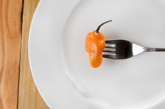 Habanero Pepper Royalty Free Stock Photography