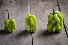 Habanero pepper. Three hot habanero peppers on wooden background Stock Image