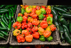 Habanero peppers Royalty Free Stock Photo