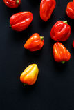 Habanero peppers on a black background Stock Photography