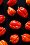 Habanero peppers on a black background Stock Image