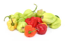 Habanero peppers Stock Photos