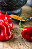 Habanero Red - very strongly hot pepper Royalty Free Stock Image