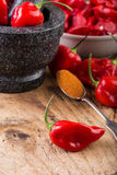 Habanero Red - very strongly hot pepper Royalty Free Stock Images
