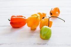 Habaneros, habanero dei peperoncini rossi, alimento messicano dei peperoncini caldi maturi piccanti del habanero nel Messico Fotografie Stock