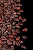 Habas asadas Grano de cacao en fondo negro fotografía de archivo libre de regalías