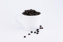 Habas de Cofee en la taza Fotos de archivo libres de regalías